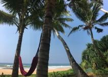 Hiru Mudra Ayurveda mit direkter Strandlage