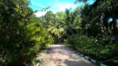 Maho Ayurveda Center Sri Lanka