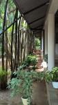 Oasis Ayurveda Resort Sri Lanka