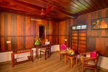 Hibiscus kleiner Wohnraum
