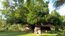 Ananda´s Watervilla mit 4 Wohneinheiten