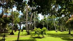 Surya Lanka Garten