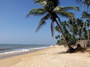 Beach Wasantha - Ayurveda Kur Sri Lanka Indien